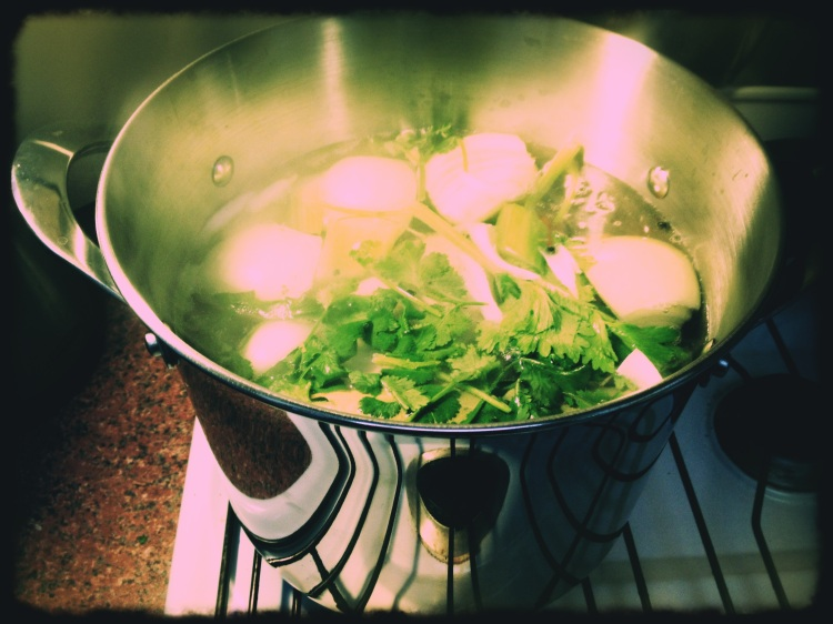 End Your Flu Chicken Soup