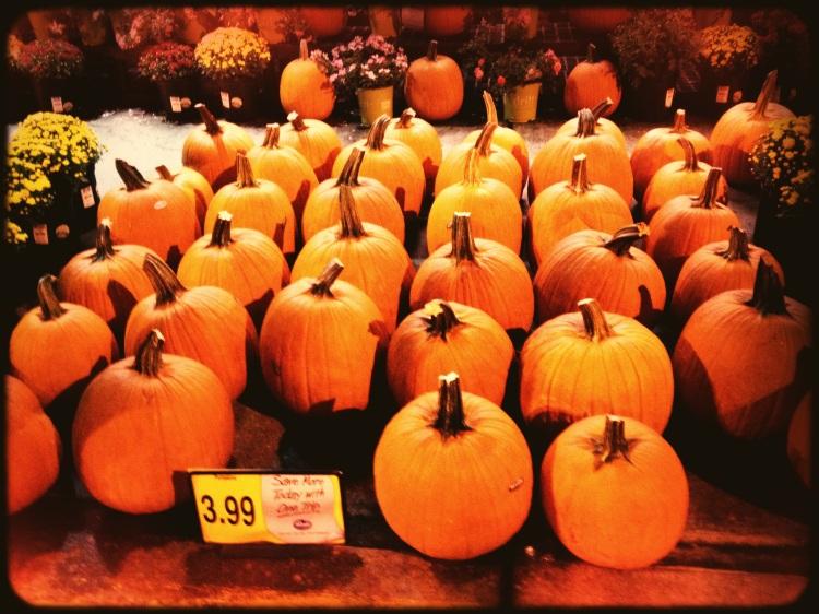 Halloween is on the horizon